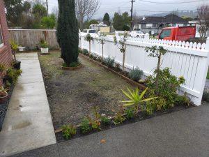 fresh lawn lower hutt