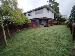 ready lawn lower hutt laid