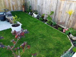installation ready lawn wellington new zealand