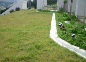 mower edge concrete kerb