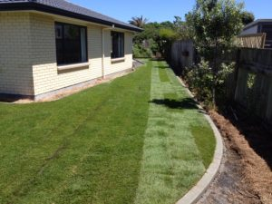 ready lawn wellington