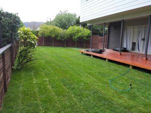 ready lawn upper hutt